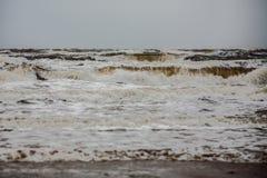风雨如磐的冬天海 库存图片