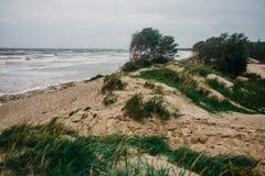 风雨如磐的冬天海 免版税图库摄影