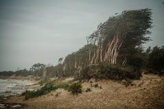 风雨如磐的冬天海 免版税库存图片