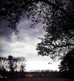 风雨如磐的夏夜 图库摄影