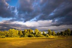风雨如磐的天空和风景树在日落的开头部分 免版税库存图片