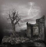 风雨如磐的晚上 库存图片