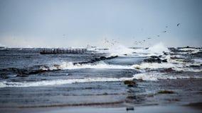 风雨如磐的海在与白色的冬天挥动击碎 免版税图库摄影