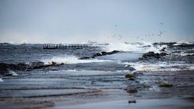 风雨如磐的海在与白色的冬天挥动击碎 免版税库存照片