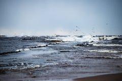 风雨如磐的海在与白色的冬天挥动击碎 免版税库存图片