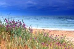 风雨如磐的海运海滩 免版税库存照片