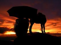 风雨如磐的牧羊人 免版税库存图片