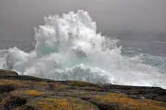 风雨如磐的通知 免版税库存照片