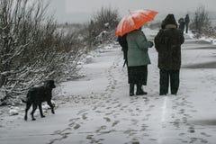 暴风雪的人们 免版税库存照片