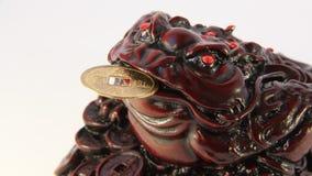 风水。青蛙象征的财宝和繁荣 股票视频