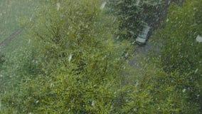 风暴在城市 股票视频