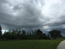 风暴在沼泽地 图库摄影