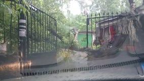 风暴在莫斯科 免版税库存照片