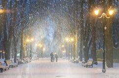 风暴在Mariinsky公园 免版税图库摄影