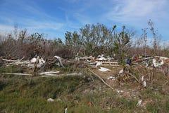 飓风厄马损伤 库存图片