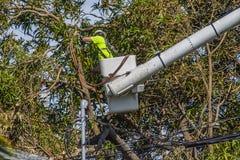 飓风厄马损伤 免版税库存图片