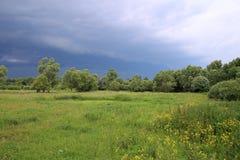 飓风天空乌云下雨草甸风暴领域树夏天阴云密布 免版税库存照片