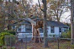 飓风损伤 免版税库存照片