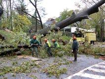 飓风桑迪清理 免版税库存图片