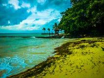 飓风的天气 免版税库存照片