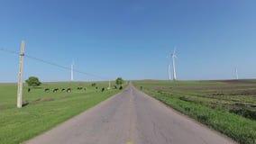 飞奔在汽车的照相机,驾驶在多布罗加,罗马尼亚 股票视频