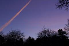 飞机由落日发怒做的桃红色 树剪影在foregr的 免版税库存照片