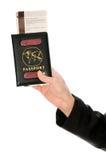 飞机票 库存图片