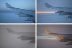 飞机翼变异 免版税库存图片