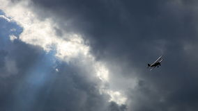飞机,老双翼飞机 股票视频