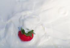 飞溅入乳脂状的酸奶的一个草莓 免版税库存图片