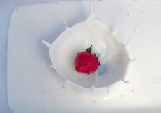 飞溅入乳脂状的酸奶的一个草莓 库存图片