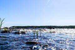 飞溅在岩石的大有风波浪 波浪飞溅在反对海滩的湖 打破在一个石海滩的波浪,形成浪花 wat 图库摄影