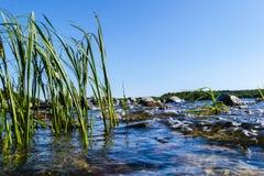 飞溅在岩石的大有风波浪 波浪飞溅在反对海滩的湖 打破在一个石海滩的波浪,形成浪花 wat 免版税图库摄影