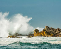 飞溅在岩石的波浪 免版税库存照片