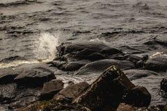 飞溅在岩石 库存照片