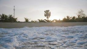 飞溅在异乎寻常的日落海滩的泡沫似的白色海浪田园诗特写镜头背景射击与惊人的棕榈树 影视素材