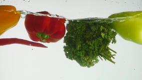 飞溅在水中的新鲜蔬菜在黑背景 股票视频