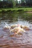 飞溅在河的孩子 库存照片