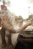 飞溅在Songkran节日的大象水在泰国。 免版税库存照片