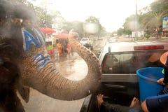 飞溅在Songkran节日的大象水在泰国。 免版税图库摄影