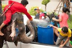飞溅在Songkran节日的大象水在泰国。 图库摄影