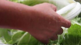 飞溅新鲜蔬菜的水 影视素材