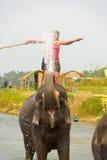 飞溅水尼泊尔的旅游大象乘驾河 免版税库存照片