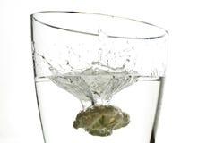 飞溅水的花椰菜 免版税库存照片