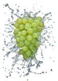 飞溅水的葡萄 库存图片