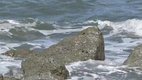 飞溅沿海的波浪岩石 股票录像
