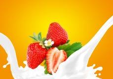 飞溅牛奶与草莓 免版税图库摄影