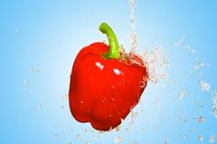 飞溅用在蓝色背景的红辣椒 免版税库存图片