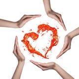 从水飞溅的红色心脏用在白色隔绝的人的手 库存图片