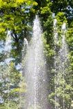 飞溅从一个喷泉的水在自然 免版税库存图片